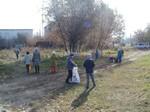 проект чистый двор