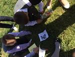 Квест-игра 'Урожай в корзинке'